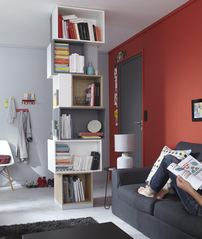 ranger tous ses livres leroy merlin. Black Bedroom Furniture Sets. Home Design Ideas