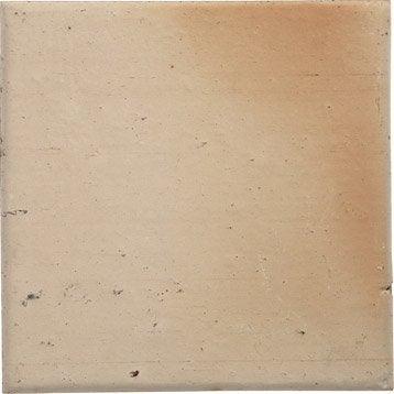 Terre cuite sol et mur rose clair effet pierre Rairies origine l.16 x L.16 cm