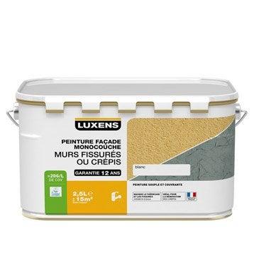 Peinture fa ade murs fissur s luxens blanc 2 5 l for Peinture appui de fenetre ton pierre