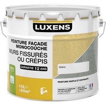 Peinture façade Murs fissurés LUXENS, blanc, 10 l