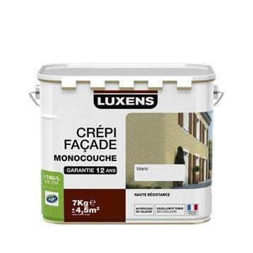 Crépis façade LUXENS, meulière, 7 kg