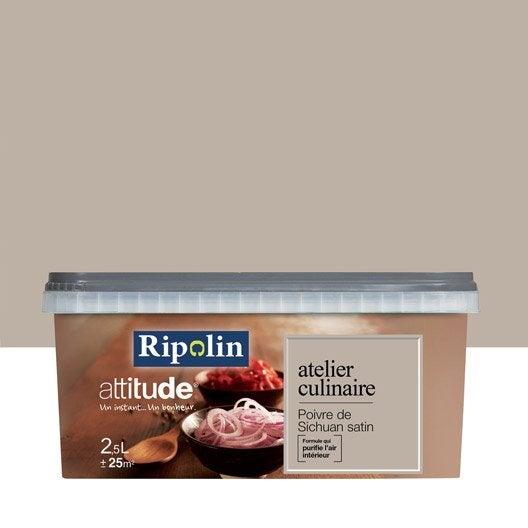 Peinture gris poivre du sichuan ripolin attitude atelier for Ripolin gris souris