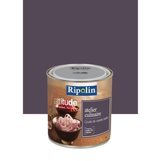 Peinture attitude atelier culinaire ripolin violet coulis de cassis 0 5 l leroy merlin for Peinture ripolin attitude
