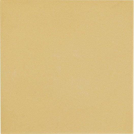 Carrelage sol et mur cognac effet uni archi x cm leroy merlin for Peinture carrelage sol v