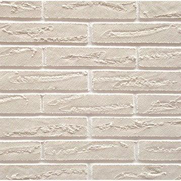 Plaquette de parement pierre naturelle blanc Elastolith