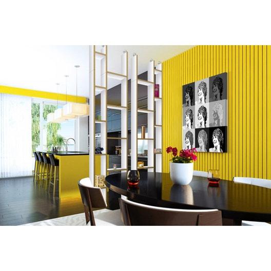 kit d 39 extension cloison de s paration orion contreplaqu bouleau m lamin blanc leroy merlin. Black Bedroom Furniture Sets. Home Design Ideas