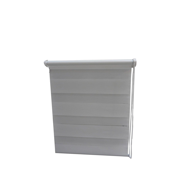 Store enrouleur jour nuit blanc 57 60 x 180 cm leroy for Store enrouleur jour nuit blanc 120x210cm