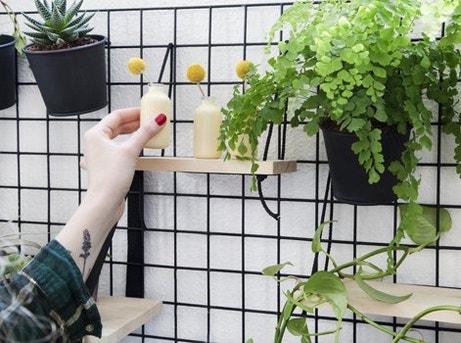 Diy r aliser un mur v g tal d 39 int rieur leroy merlin for Realiser un mur vegetal