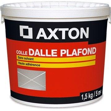Colle dalle, rosace, moulure de plafond Prête à l'emploi AXTON, 1.5 kg