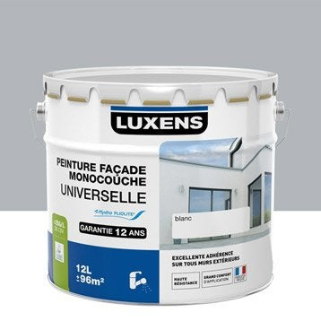 Peinture façade Universelle LUXENS, gris cendré, 10 l