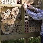 Atelier adulte et/ou enfant : Comment réaliser une maison à insectes géant ?