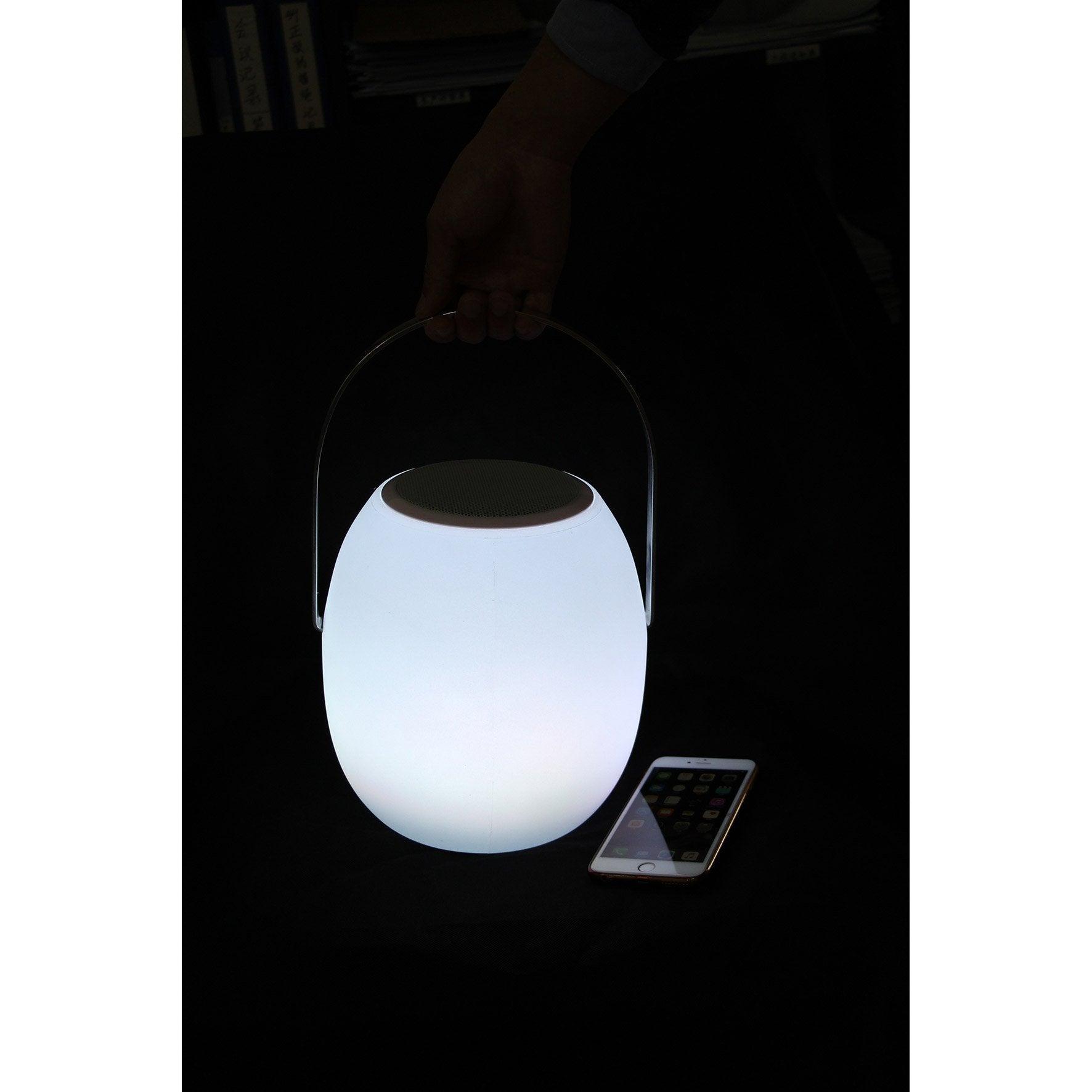 Lampe lumineux Nomade ovale sound h23cm LED intégrée blanc VARANGUE