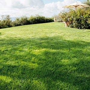 Terrasse jardin am nagement ext rieur et piscine leroy for Magasin amenagement jardin
